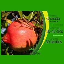 Semillas De Granada