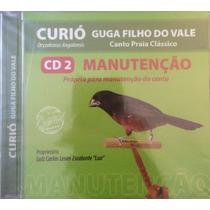 Cd Manutenção De Canto Com O Campeão Brasileiro Guga Filho
