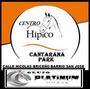 Programa Para Centro Hipicos