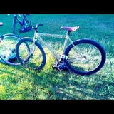 Bicicleta Fixie Animal Print