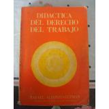 Didáctica Del Derecho Del Trabajo Rafael Alfonzo-guzman