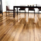 T3i Piso Laminado Hickori Brillante 10mm 1st 2,24 M2 Narrow