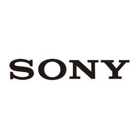 Sony Dmw30rs2h - Dvd-rw De 10 X (8cm) - 1.4 Gb (30min) - Bli