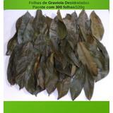 Folhas De Graviola Desidratadas 80g/200 Folhas Secas P/ Chá