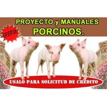 Proyecto Basico Porcino Cerdos Cochino Sirve Para Credito