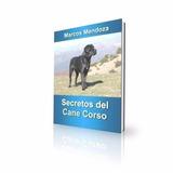 Cane Corso - Secretos De La Raza + Adiestramiento + 3 Bonus
