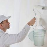 Látex Economico Blanco X 20l Lts Interior Pintura Acrilico