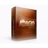 8dio Adagio Violins Kontakt Pc Online!