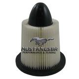 Filtro Ar Mustang Gt V8 V6 94 95 1994 1995