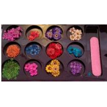 Decoração De Unhas - Flores Secas 12 Cores - Frete Grátis