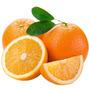Sementes Laranja Serra Dágua Sementes Fruta Para Mudas