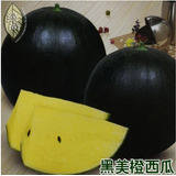 5 Sementes De Deliciosas Melancias Amarelas Huang Xiao Fu***