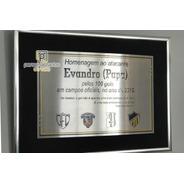 Certificado / Diploma Aço Inox / Baixo Relevo