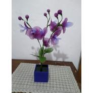 Orquídea Vaso Madeira Violeta 3 Galhos Flores Lilás Violeta E Verde