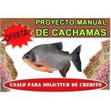 Proyect0 Manual De Cultivo De Cachamas .produccion Segura