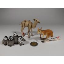 3 Figura Schleich Animal Silvestre Pingüinos Canguro Camello