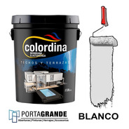 Membrana Liquida Impermeabilizante Techos Colordina X 20kg