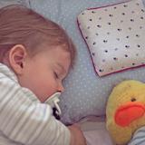 Almohadilla Semillas Para Bebes | Shie Shie Almohaditas |