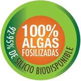 Silicio Organico Algas Fosilizadas 2 Kilos Envio Gratis