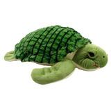 Tartaruga Marinha Cascuda