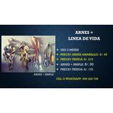 Arnes + Linea De Vida