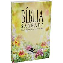 Bíblia Sagrada Ntlh Evangelismo Média Linguagem De Hoje
