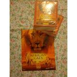 Album African Cats Panini + 100 Envelope Lacrado