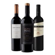 Vino Combo Malbec Oferta X 3 Botellas - Tomate Algo® -