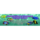 Gran Cierre De Pedidos - 5 De Noviembre 2017