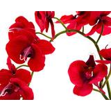 Planta Artificial Ambiance De 60 Cm Pm-4095373