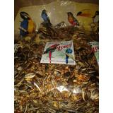 Alimento-racion Para Loros Calidad Agromercado 450g