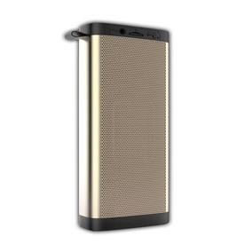 Caixa De Som Bluetooth Fm Aux Recarregável Portátil