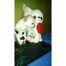 Chihuahua Hembrita Mini! Fca
