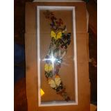 Cuadro De Mariposas Amazonicas