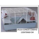 Jaula Cobayo Cobayera Gigante Completa Pet Shop Beto