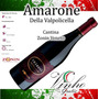 Vinho Italiano Amarone Della Valpolicella 2013 - Zonin