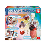 Juego De Mesa Educativo Esqueleto Cuerpo Humano 8+