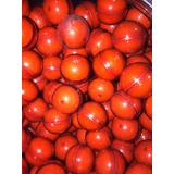 15 Pepperballs Por $600 Defensa Personal Paintball Gotcha