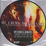 My Chemical Romance I Brought Lp Fotodisco Green Day Sleepin