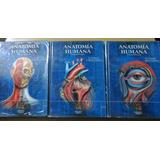 Tratado De Anatomía Humana Fernando Quiroz Tomo 1, 2 Y 3