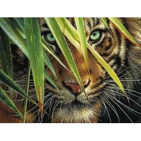 Rompecabezas Ravensburger De 1000 Piezas: Tigre Mistico