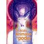 Oraculo De Los Animales De Poder - Libro + Cartas - Nuevo