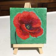 Mini Cuadro Decorativo Una Flor Amapola