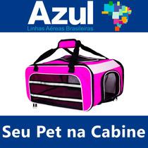 Bolsa Cia Aérea Azul Caixa Transporte Cão Na Cabine Do Avião