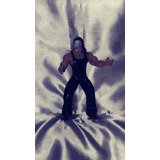 Figura Luchador Jeff Hardy Wwe Muñeco Articulado