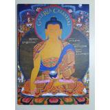Galería Celestial - Shrestha Romio - Gaia Ediciones