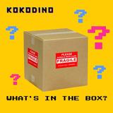 Mystery Box Grande Caja Misteriosa Sorpresa Regalo Kokodino