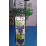 caja decorada para vino o cualquier bebida fiestas cumples