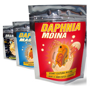 Artemia + Daphnia Magna + Moina -cultura Start P/ Eclodir