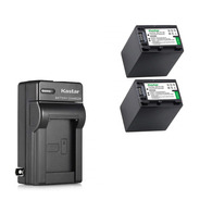 2 Baterías + Cargador Np-fv100 Np-fv70 Marca Kastar